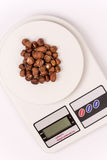 Bunch of hazelnuts on the digital scale Stock Photos