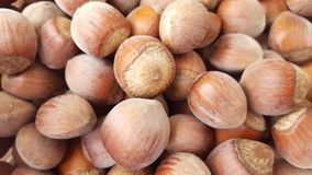 A bunch of hazelnuts Royalty Free Stock Photos
