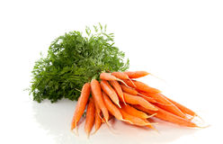 A bunch of healthy carrots Royalty Free Stock Images