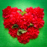 Bunch of heart flower Royalty Free Stock Photography
