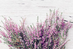 Bunch of heather flower calluna vulgaris, erica, ling on shabby wooden table top view. Pastel greeting card in vintage style. Bunch of heather flower calluna royalty free stock images