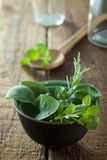 Bunch of herbs Stock Image