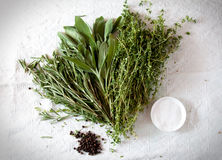 Bunch of herbs for cooking Stock Images