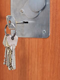 Bunch of home keys in keyhole of door Stock Images