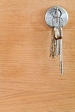 Bunch of home keys in lock of wood door Stock Photography