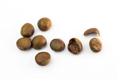 Bunch of horse chestnuts isolated on white background Royalty Free Stock Photos