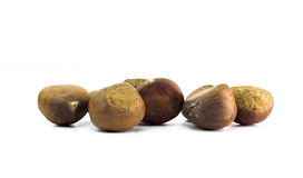Bunch of horse chestnuts isolated on white background Stock Photo