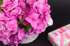 Bunch of hortensia pink flowers and present box Royalty Free Stock Images
