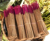 Bunch of incense sticks Royalty Free Stock Photo