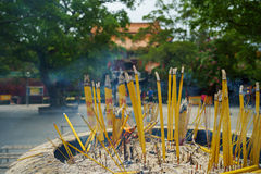 Bunch of Incense sticks Stock Images