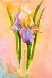 Bunch of iris flowers on pink background Royalty Free Stock Image