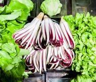 Bunch of italian salad radicchio in market Stock Photos