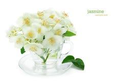 Bunch of jasmine flowers Stock Photos