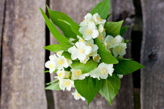 Bunch of jasmine flowers on wooden table Stock Image