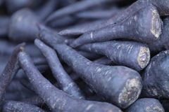 A bunch of Juicy Black Carrots stock photos