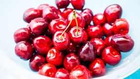A bunch of juicy cherries. A bunch of juicy red cherries Stock Images