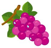 Bunch of juicy grapes Stock Photography