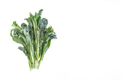 Bunch of kale on white background with empty copyspace Stock Photography