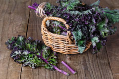 Bunch of kale on a wooden background Stock Photography
