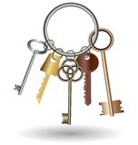 Bunch of keys. Against the white background is bunch of five keys Stock Images