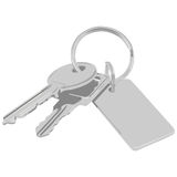Bunch of keys. An illustration of a bunch of keys with a blank tag Stock Photos