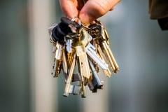 Bunch of keys Stock Image