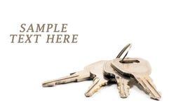 Bunch of keys isolated Stock Image