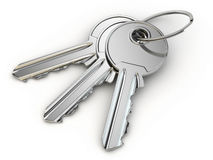 Bunch of keys on white  background. Stock Images