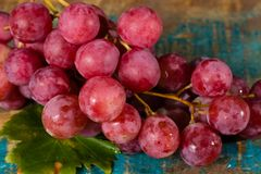 Bunch of large organic table grapes Red Globe Stock Photos