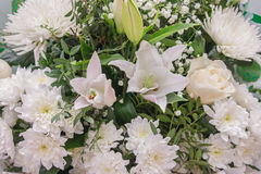 Bunch of large white chrysanthemums lily gypsophila roses Royalty Free Stock Photo