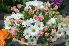 Bunch of large white chrysanthemums and pink roses Royalty Free Stock Photo