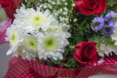 Bunch of large white chrysanthemums and red roses Stock Image