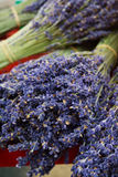 Bunch of lavander at the market. A bunch of lavander displayed at the market Stock Images