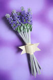 Bunch of lavender. On purple background stock images