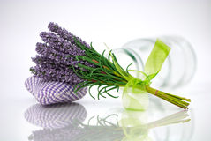 Bunch of lavender Stock Image