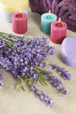 Bunch of lavender Stock Photos