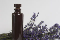 Bunch of lavender with a bottle of oil royalty free stock photos