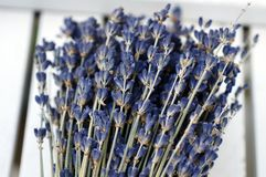 Bunch of lavender. Lavender bouquet laying on a white table royalty free stock photo