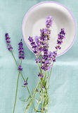 Bunch of  lavender flowers with dish on turquoise  background Royalty Free Stock Images