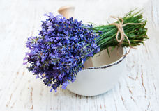 Bunch of lavender flowers and mortar Stock Image