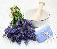 Bunch of lavender flowers and mortar Stock Photography
