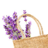 Bunch of  lavender flowers in the  rag bag on white background Stock Photography