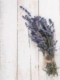 Bunch of lavender Stock Photos