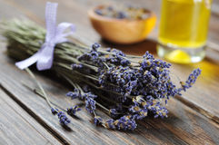 A bunch of lavender flowers Stock Photos