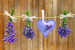 Bunch of lavender and lavender bags Stock Photos