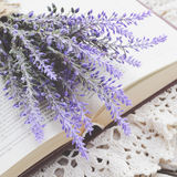 Bunch of lavender laying upon open book on vintage doily Royalty Free Stock Image