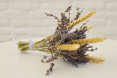 Bunch of lavender on white background stock photography