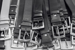 Bunch of leather belts. For men. Black and white picture Royalty Free Stock Images