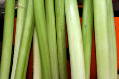A bunch of leeks leaning on the box on the table. Novi Sad, Serbia Stock Photography