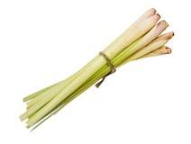 Bunch lemongrass Royalty Free Stock Photography